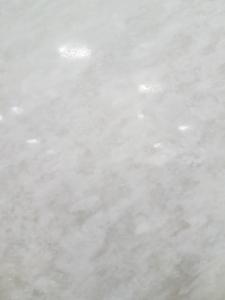 Rino White 3CM
